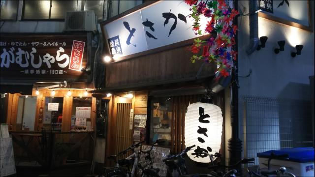 とさかと竜葵_01.JPG