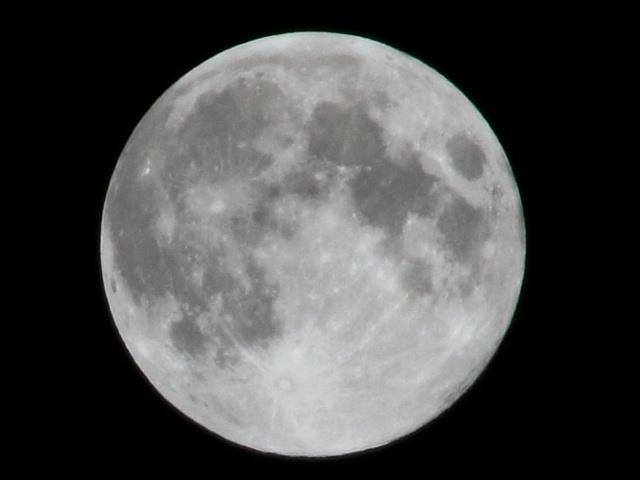十五夜満月.JPG