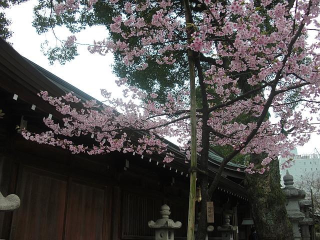 福岡へ再び行ってみた_5-04.JPG