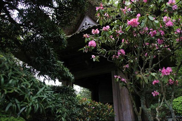 鎌倉1-09.JPG