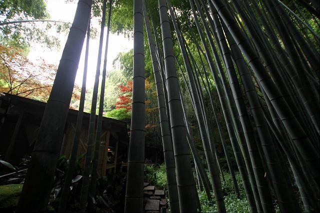 鎌倉1-13.JPG